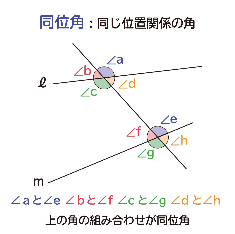中学生の数学で出る、平行線の同位角(どういかく)と錯角(さっかく)の性質の説明図2