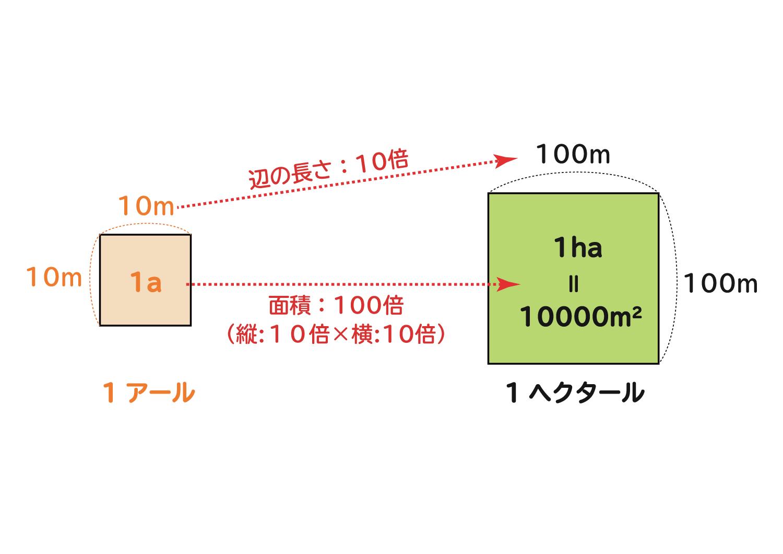 面積の単位「平方センチメートル・平方メートル・アール・ヘクタール」の関係4